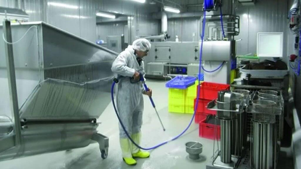 food plant cleaning professional